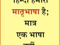 हिंदी हम तुझ से शर्मिंदा हैं