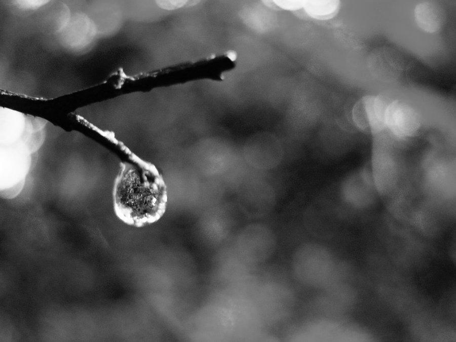hope_inside_heaven__s_tears
