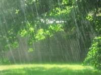 बारिश हो रही है