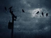 MY LIFE IS LIKE A RAIN…